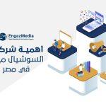 أهمية شركات السوشيال ميديا في مصر