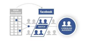 Screenshot 1 13 300x152 - تطورات الفيسبوك لدعم الأعمال - الفيسبوك لدعم الأعمال, الفيسبوك, أصحاب الأعمال, TxO, Talent x Opportunity Initiative, Facebook Elevate, facebook, Creator Studio, Andreessen Horowitz